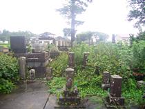 墓地除草 着手前