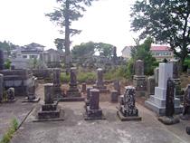 墓地除草 完了