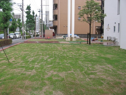 教会様 芝張り施工後